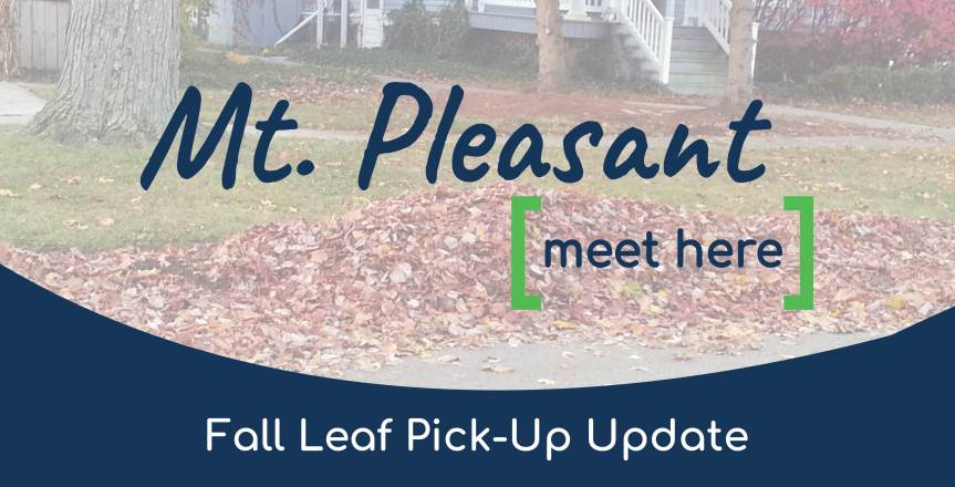2020 Fall Leaf Collection Information (Updated 11/6/2020)